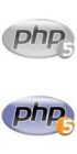 Hire PHP web developer